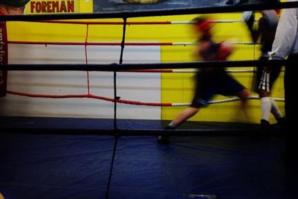 Liten Boxare #1