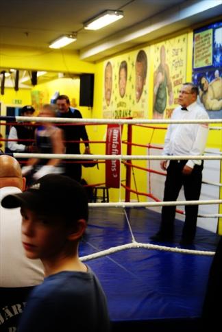 Liten Boxare #5