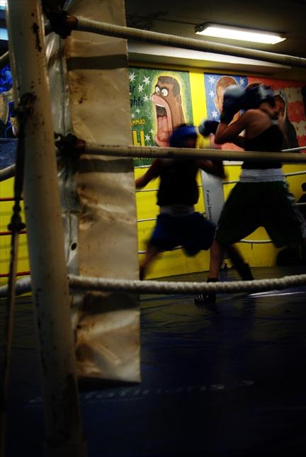 Liten Boxare #2