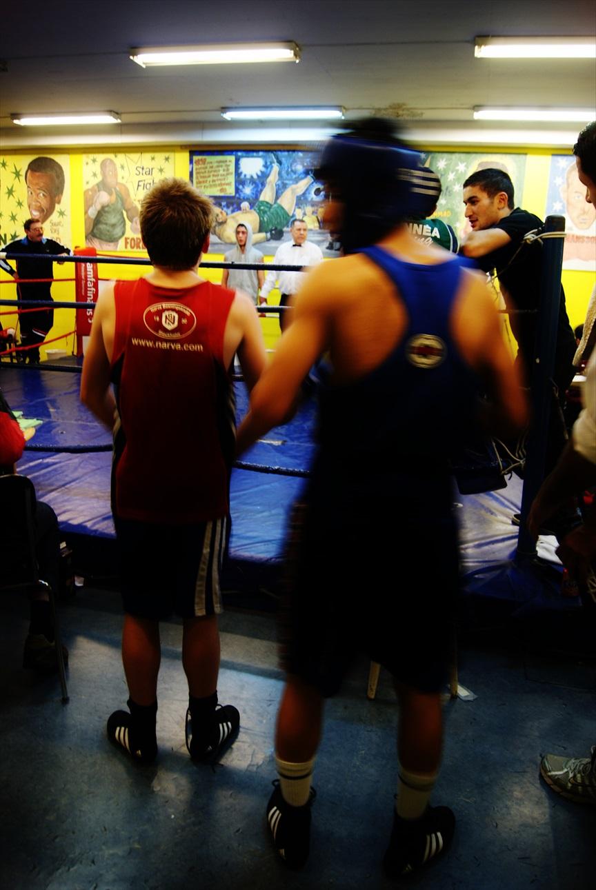 Liten Boxare #3